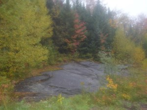 10919975 - Vacant lot for sale