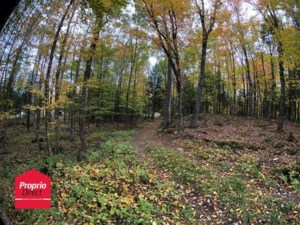 19817098 - Vacant lot for sale