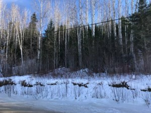 28501239 - Vacant lot for sale