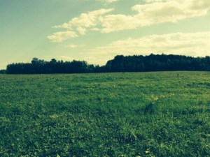 23734947 - Vacant lot for sale