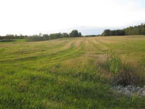 24015511 - Vacant lot for sale