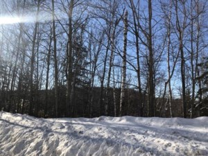 25108578 - Vacant lot for sale