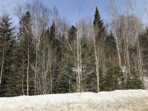22865972 - Vacant lot for sale