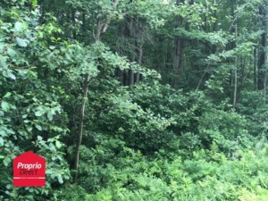 28466309 - Vacant lot for sale