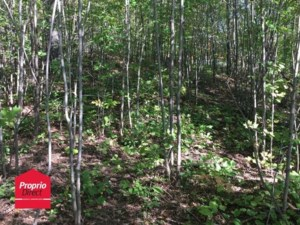 28497605 - Vacant lot for sale