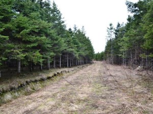 28353597 - Vacant lot for sale