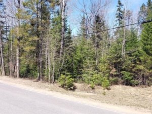 22695016 - Vacant lot for sale