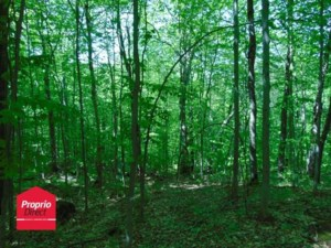 13214000 - Vacant lot for sale