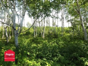 26359514 - Vacant lot for sale