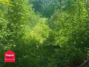 26347137 - Vacant lot for sale