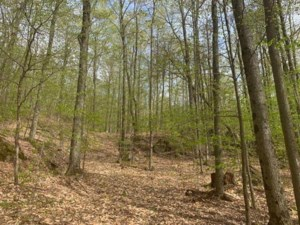 15606891 - Vacant lot for sale
