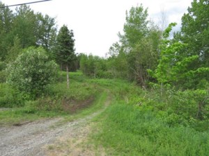 11337094 - Vacant lot for sale