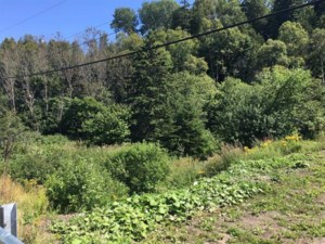 25309637 - Vacant lot for sale