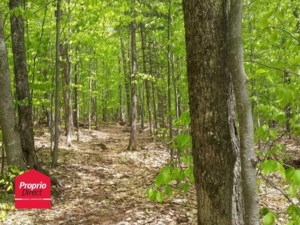 21533314 - Vacant lot for sale