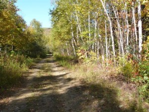 13817190 - Vacant lot for sale