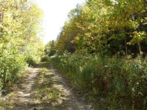 10646044 - Vacant lot for sale