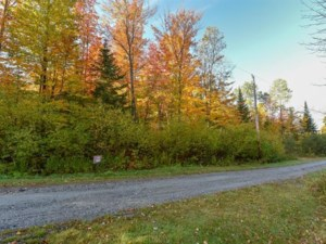 27831792 - Vacant lot for sale