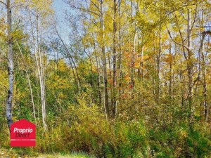 10488684 - Vacant lot for sale