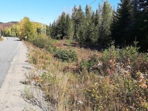 10914775 - Vacant lot for sale