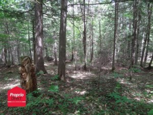 23800269 - Vacant lot for sale