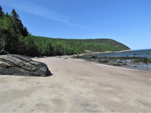 18556290 - Vacant lot for sale