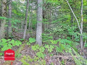 22630723 - Vacant lot for sale