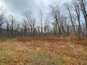 12984871 - Vacant lot for sale