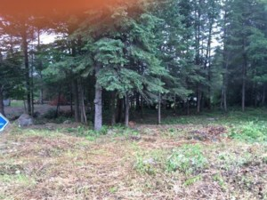 16751816 - Vacant lot for sale