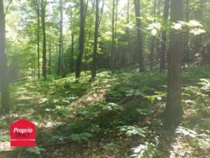 22395962 - Vacant lot for sale