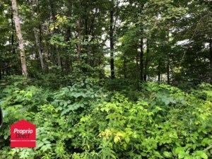 18398253 - Vacant lot for sale