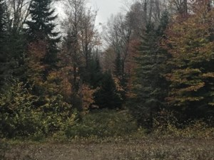 26096126 - Vacant lot for sale