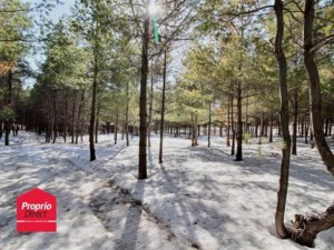 11356835 - Vacant lot for sale