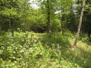 26252071 - Vacant lot for sale