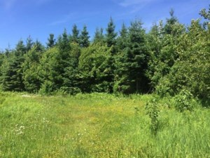 11238525 - Vacant lot for sale