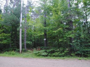 17532321 - Vacant lot for sale