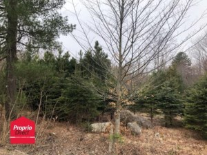22401885 - Vacant lot for sale