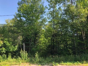 10008338 - Vacant lot for sale