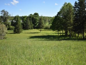 24187079 - Vacant lot for sale