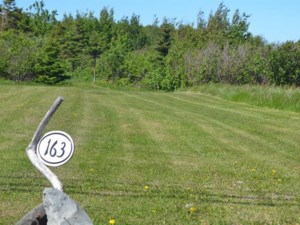 11165107 - Vacant lot for sale