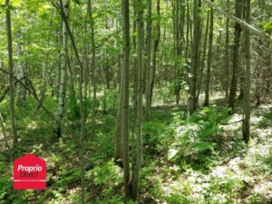 12645482 - Vacant lot for sale
