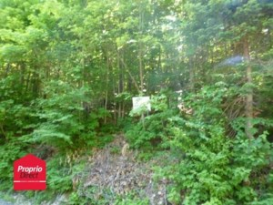 23551154 - Vacant lot for sale