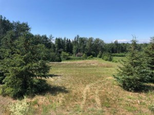 17590361 - Vacant lot for sale