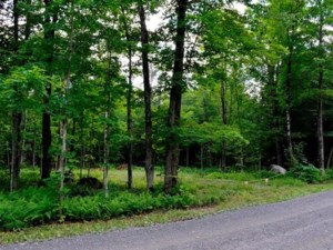 20506323 - Vacant lot for sale