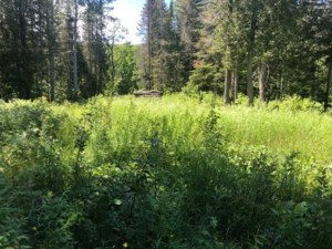 11554536 - Vacant lot for sale