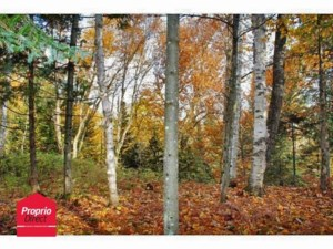 21871750 - Vacant lot for sale