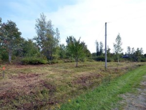 28955142 - Vacant lot for sale
