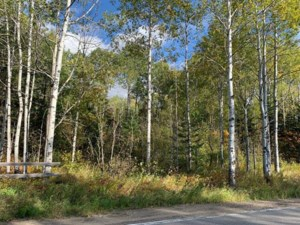 16805042 - Vacant lot for sale