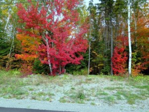 11520751 - Vacant lot for sale