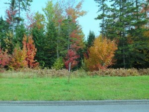 18721882 - Vacant lot for sale