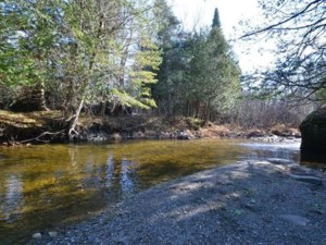 19849975 - Vacant lot for sale